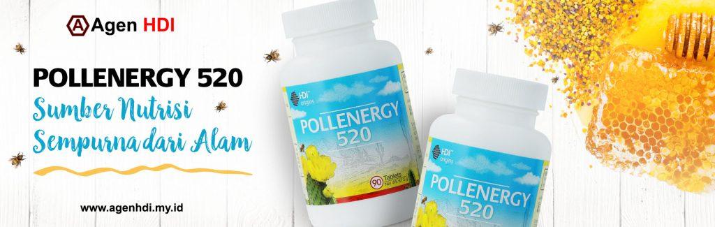 Pollenergy 520
